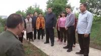 独家视频丨习近平在南阳市淅川县考察南水北调工程