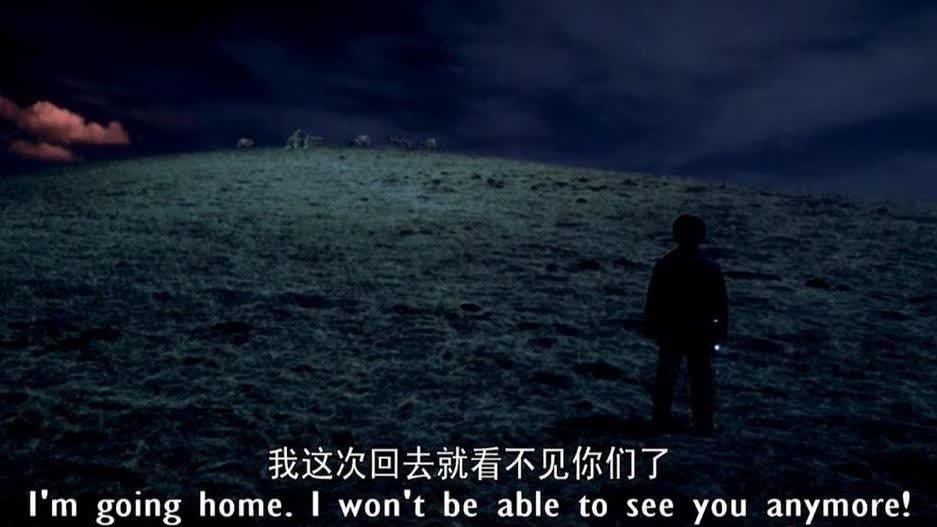 小伙离开西藏回老家,跟自己最好的朋友道别,不料朋友竟是一群狼