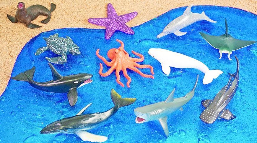 海洋动物玩具布置海洋馆