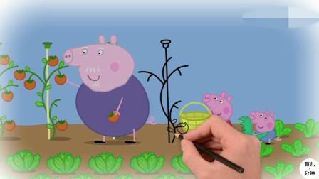 小猪佩奇、乔治和猪爷爷在花园里采摘蔬菜!