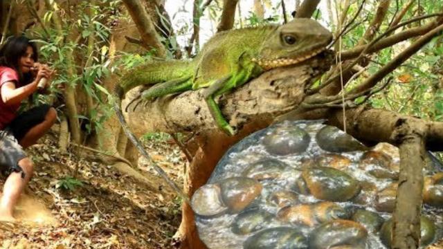 美女野外捕抓蜥蜴,却有意外惊喜,网友直呼:简直太幸运了