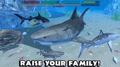 鲨鱼模拟海底世界搞笑生存 海底发现船只 被海豚攻击了