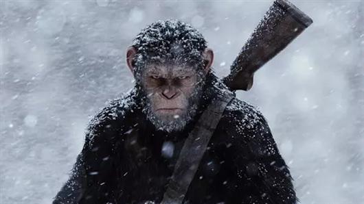 【猩球崛起3终极之战】新预告打响人类命运之战