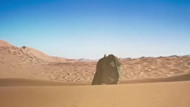 【恐龙王】特暴龙爱子心切出现幻觉
